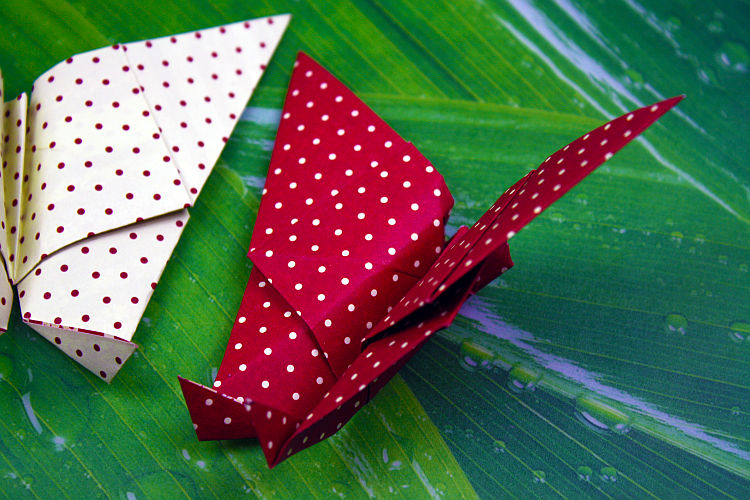 origami-schmetterling-falten-6