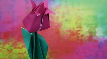 origami-tulpe1
